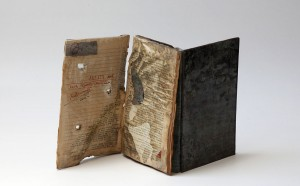 Artists-Book_Roberta-Vaigeltaite-2