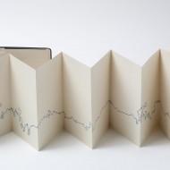 artists-book-Deirdre-Kelly-3